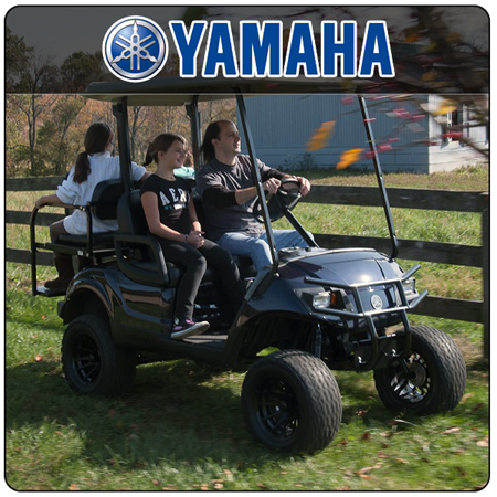 Picture for category Yamaha Carts